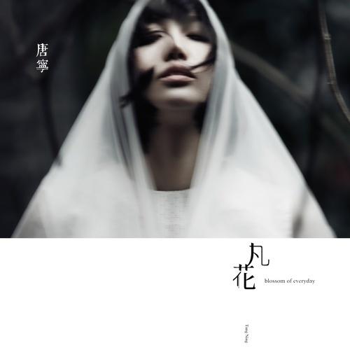 tang-ning2015